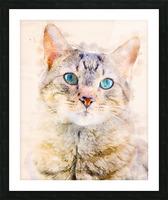 Dragon Li Hau cat Picture Frame print