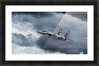 Eye of the Tiger by Leon   Picture Frame print