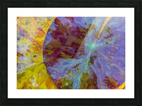 Colors Of Nature ap 2038 Picture Frame print