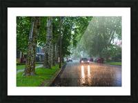 Summer Rain ap 2892 Picture Frame print