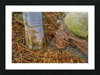 Barn Trolley ap 2241 Picture Frame print