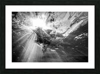 Sunlight ap 2048 B&W Picture Frame print