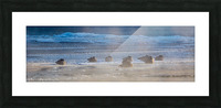 Canada Geese ap 1993 Picture Frame print