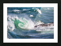 Wave Curl ap 2663 Picture Frame print