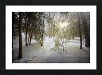 Sunlight ap 2731 Picture Frame print