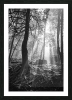 Sunlight ap 1928 B&W Picture Frame print