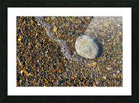 Pebble ap 1599 Picture Frame print