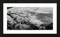 Splash Icicles ap 2147 B&W Picture Frame print