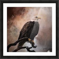 Looking Forward - Eagle Art by Jordan Blackstone Picture Frame print