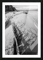 Driftwood ap 2482 B&W Picture Frame print