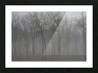 Treeline & Buck apmi 1548 Picture Frame print