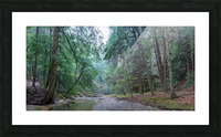 Queer Creek apmi 1638 Picture Frame print