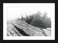 Lichen and Granite ap 2340 B&W Picture Frame print