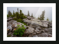 Overlook ap 1911 Picture Frame print