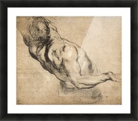 Study of man s torso by Rubens Picture Frame print