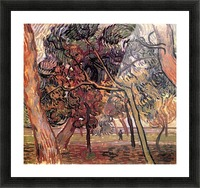 Study of Pine Trees by Van Gogh Picture Frame print