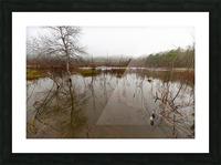 Beaver Pond ap 2357 Picture Frame print