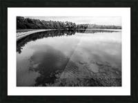 Reflection ap 2595 B&W Picture Frame print