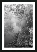 Morning Fog ap 1570 B&W Picture Frame print