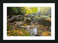 Reflections ap 2476 Picture Frame print
