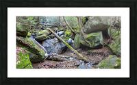 Kildoo Run apmi 1750 Picture Frame print