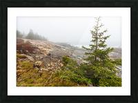 Lone Pine ap 2284 Picture Frame print