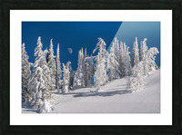 Alpine moon Picture Frame print