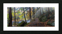 Alpha Pass Trail apmi 1927 Picture Frame print