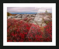 Bear Rocks Preserve apmi 1792 Impression et Cadre photo