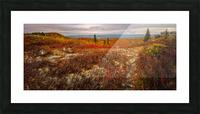 Colors of Nature apmi 1782AL Impression et Cadre photo