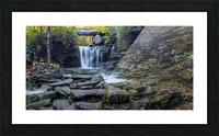 Elakala Falls and Bridge apmi 1775 Picture Frame print