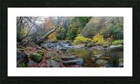 Cowanshannock Creek apmi 1962 Picture Frame print