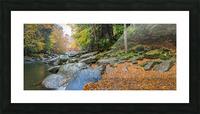 Slippery Rock Creek apmi 1959 Picture Frame print