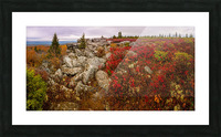 The Colors of Nature apmi 1786AL Picture Frame print