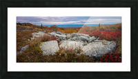 The Colors of Nature apmi 1781 Picture Frame print