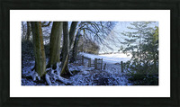 Woods in the Snow Picture Frame print