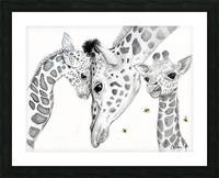 Giraffe Family  Picture Frame print