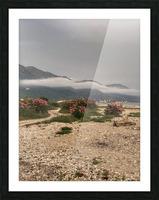 Albania Picture Frame print
