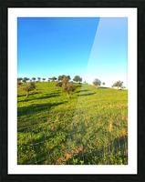 Landscape of central Portuga Picture Frame print