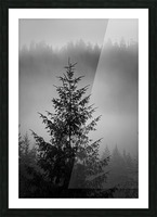 Lonliest Tree Picture Frame print