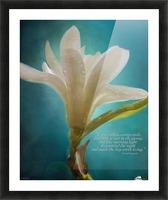Like Morning Light - Flower Art by Jordan Blackstone Picture Frame print