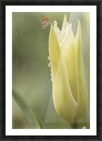 Spirit Of Love - Spring Art by Jordan Blackstone Picture Frame print