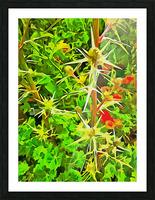 Eryngium Pop Art Style Picture Frame print