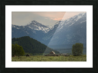 The Barn Picture Frame print