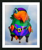 Pirate Parrot Adventures Picture Frame print