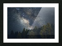 Lincoln National Forest Picture Frame print