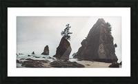 Shi Shi Beach Picture Frame print