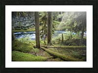 The Mckenzie River Picture Frame print