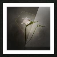 Graceful flower - Freesia   vintage style gold  Picture Frame print