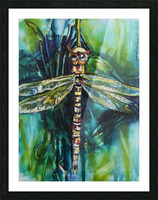 Louisiana Dragonfly Picture Frame print